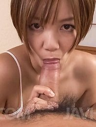 Meguru Kosaka Asian sucks boner and rubs it between fine boobies